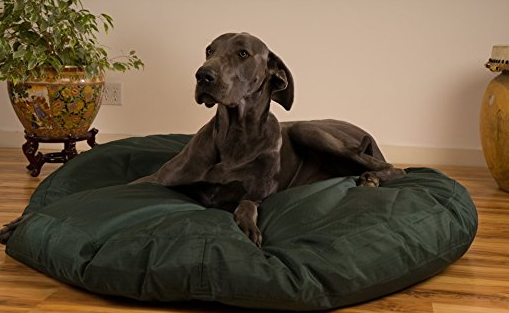 Unchewable Dog Beds