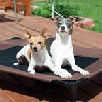 best elevated dog bed Raised Dog Bed